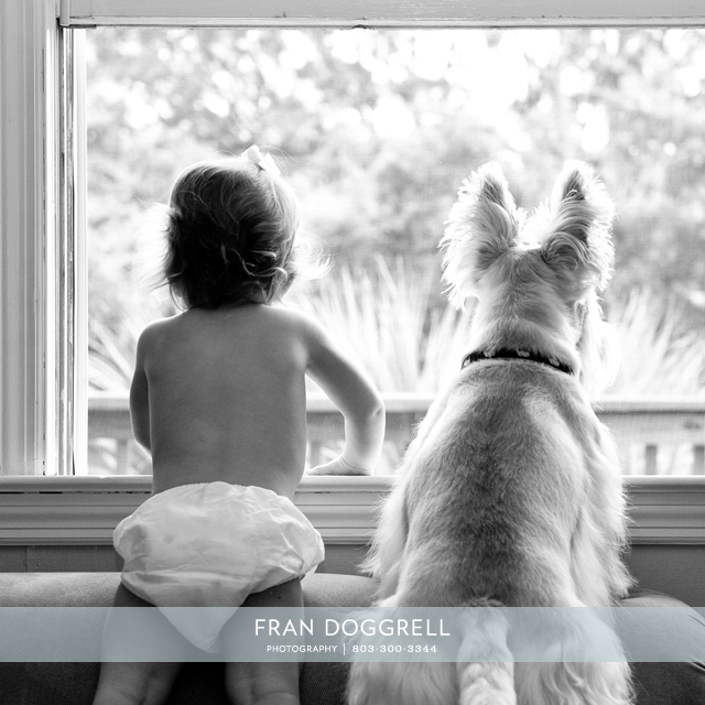 Fran Dogrell Baby & Dog, both beautiful and sentimental.