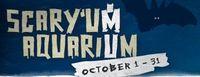Scaryum Aquarium at SC Aquarium in October