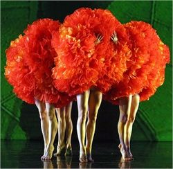 Charleston Concert Association opening season performance MOMIX Botanica