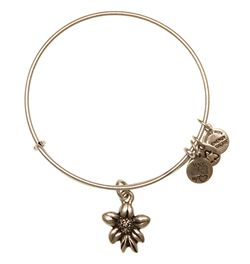 Alex and Ani Apple Blossom Bracelet
