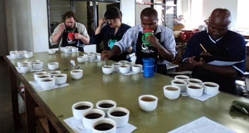 Coffee Grading