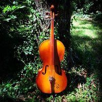 CSO Cello
