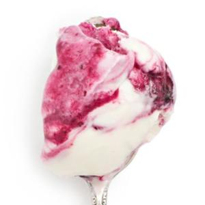 Jeni's Splendid Ice Cream Summer Flavor