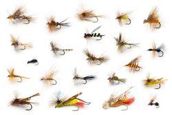 Fishing Lures Charleston Angler